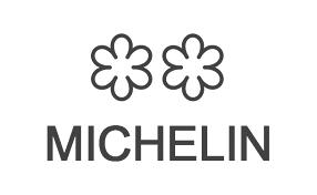 Icone Michelin